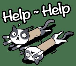 Cat rule the world(english) sticker #11346100