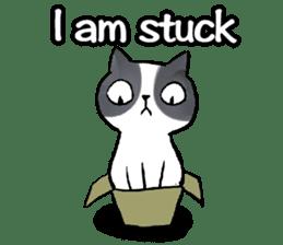Cat rule the world(english) sticker #11346115