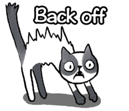 Cat rule the world(english) sticker #11346127