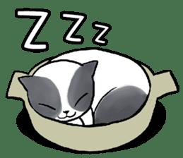 Cat rule the world(english) sticker #11346134