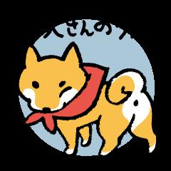 Shiba-Inu-San-no-Tsubo vol.3