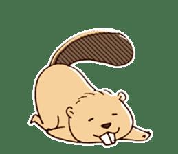 Funny , cute , beaver sticker #11397905