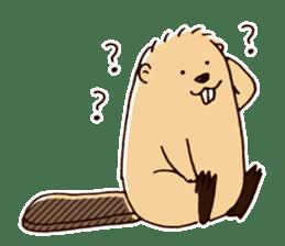 Funny , cute , beaver sticker #11397915