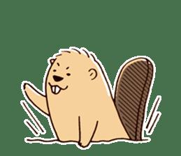 Funny , cute , beaver sticker #11397916
