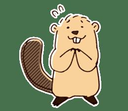 Funny , cute , beaver sticker #11397917
