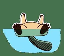 Funny , cute , beaver sticker #11397918