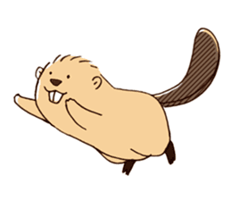 Funny , cute , beaver sticker #11397919