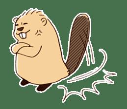 Funny , cute , beaver sticker #11397922