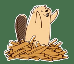 Funny , cute , beaver sticker #11397931