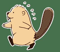 Funny , cute , beaver sticker #11397935