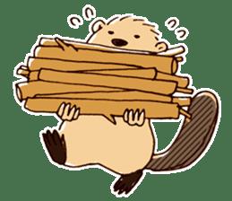 Funny , cute , beaver sticker #11397942