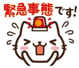 Beginning & closing cat sticker #11399034