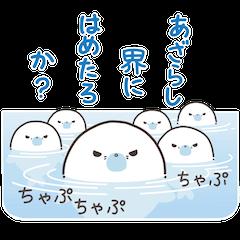 Cute seal by Torataro