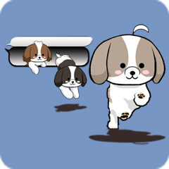 Shih Tzu dog and Friends 2.