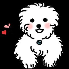 Happy Puppies 5