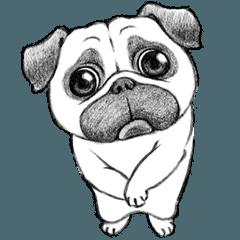 Melancholy Pug 2