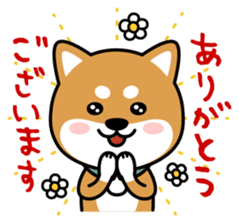 Messenger dog ! Mameshiba sticker #11440994