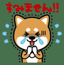 Messenger dog ! Mameshiba sticker #11440996