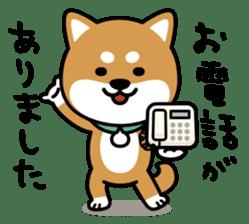 Messenger dog ! Mameshiba sticker #11440997