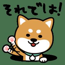 Messenger dog ! Mameshiba sticker #11441001