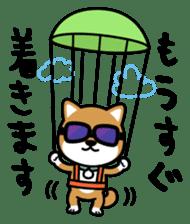 Messenger dog ! Mameshiba sticker #11441004