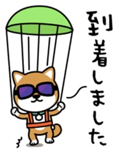 Messenger dog ! Mameshiba sticker #11441005