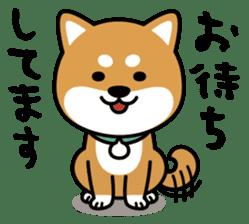 Messenger dog ! Mameshiba sticker #11441012