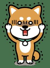 Messenger dog ! Mameshiba sticker #11441016