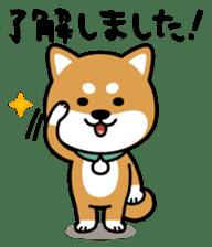 Messenger dog ! Mameshiba sticker #11441018