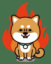 Messenger dog ! Mameshiba sticker #11441021