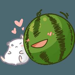Watermelon & Hamsters