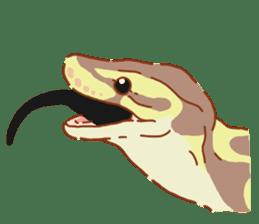 Ball python sticker #11497734