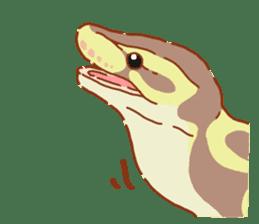 Ball python sticker #11497735