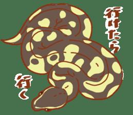 Ball python sticker #11497736
