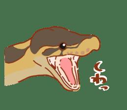 Ball python sticker #11497739