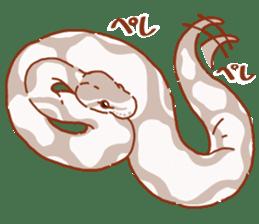 Ball python sticker #11497740