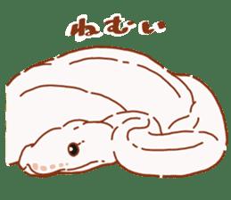 Ball python sticker #11497749