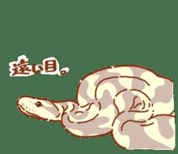 Ball python sticker #11497751