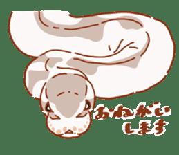Ball python sticker #11497755