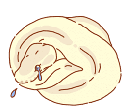 Ball python sticker #11497758