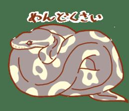 Ball python sticker #11497760