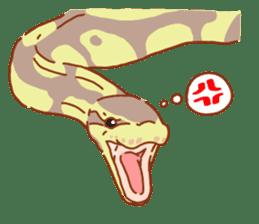 Ball python sticker #11497762