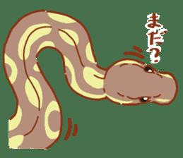 Ball python sticker #11497766