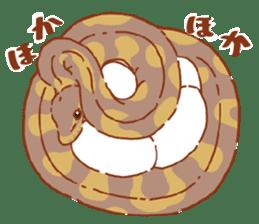 Ball python sticker #11497767