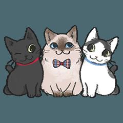 Nekosan's family of cats