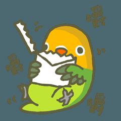 Mango's Daily Life