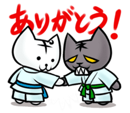 Posiro Karate sticker #11604398