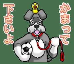 Schnauzersan sticker #11617352