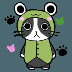 Frog cat1