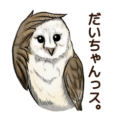 DAICHAN of the Owl